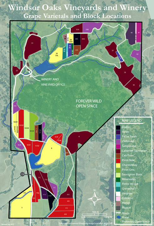Windsor Oaks Vineyard Block Map